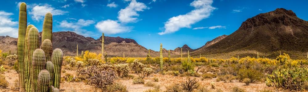 Arizona Quonset Hut Kits